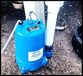 septic system pumps